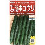 野菜種 キュウリ ずーっととれるきゅうり 18粒 サカタ交配