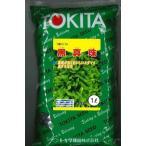 枝豆 黒真珠 1L トキタ種苗