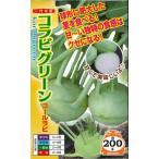 種子 コールラビ コラビグリーン 80粒 ナント種苗