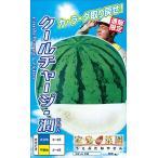 野菜種 スイカ クールチャージ・潤  6粒 ナント交配