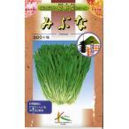京野菜 みぶな(晩生種) 10ml タカヤマシード