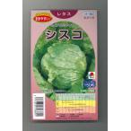 レタス シスコ 150粒 ペレット種子 タキイ育成