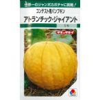 かぼちゃ アトランチック・ジャイアント(コンテスト用) 6粒 タキイ種苗