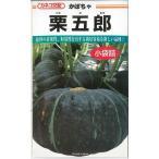 野菜種 かぼちゃ 栗五郎 10粒 カネコ交配
