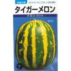 野菜種 メロン タイガーメロン 20ml 高農品種