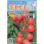 ミニトマト 収穫日和 10粒 トキタ種苗