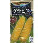 野菜種  とうもろこし グラビス 200粒 雪印種苗