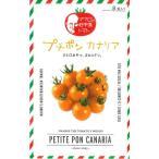 トマト  プチポン カナリア 8粒 パイオニアエコサイエンス