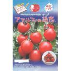 マウロの地中海トマト アマルフィの誘惑 8粒