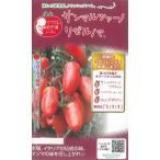 マウロの地中海トマト  サンマルツァーノ リゼルバ 8粒