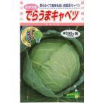 野菜種 キャベツ  でらうまキャベツ 1.5ml 松永交配