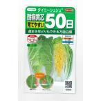 野菜種 白菜 タイニーシュシュ 小袋 サカタのタネ 食彩