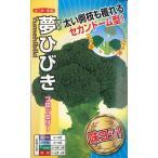 ブロッコリー 夢ひびき 0.7ml ナント種苗