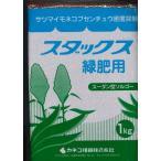 緑肥 ソルガム スダックス緑肥用(イネ科)1kg カネコ種苗株式会社