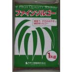 緑肥 ソルガム ファインソルゴー(イネ科)1kg カネコ種苗株式会社