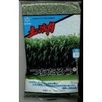 緑肥 ソルゴー つちたろう 1kg 雪印種苗株式会社