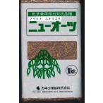 緑肥  ニューオーツ(イネ科) 1kg  カネコ種苗(株)