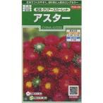 花の種 オール1割引き! アスター 松本クリアスカーレット 小袋 サカタのタネ