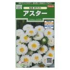 花の種 オール1割引き! アスター 松本ホワイト 小袋 サカタのタネ