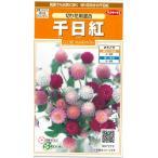 花の種 オール1割引き! 千日紅 切り花用混合 小袋  サカタのタネ