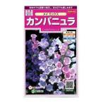 花の種 オール1割引き! カンパニュラ メイミックス 小袋  サカタのタネ