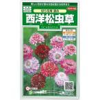 花の種 オール1割引き! 西洋松虫草 切り花用混合 小袋 サカタのタネ