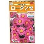 花の種 オール1割引き!ローダンセ 切花用混合 小袋  サカタのタネ