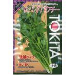 ハーブの種 コリアンダー サバイパクチー 10ml トキタ種苗