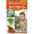 イタリア野菜 カリフローレ 50粒 トキタ種苗