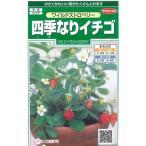花の種 オール1割引き!ワイルドストロベリー(四季なりイチゴ)  小袋   サカタのタネ