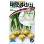 野菜種 玉葱 トップゴールド305 3.5ml 高農品種