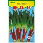 野菜種 ねぎ 赤ひげ 10ml トキタ種苗