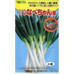 ねぎ種  なべちゃん 小袋  トキタ種苗