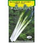 野菜種 ねぎ 森の奏で 5ml トキタ種苗