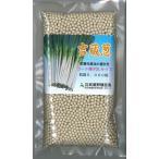 野菜種 ねぎ 吉蔵 2L コート種子 5000粒 (株)武蔵野種苗園