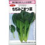 小松菜種  ちぢみ小松菜  20ml  松島交配