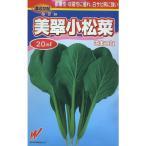 野菜種 小松菜 美翠 20ml 渡辺農事