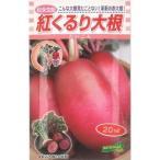 野菜種 大根 紅くるり 3ml 松永交配