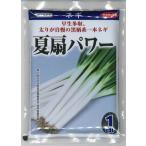 野菜種 ねぎ 夏扇パワー 1dl  サカタ交配