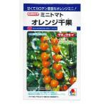 1割引き! 野菜種 ミニトマト オレンジ千果 18粒 タキイ交配