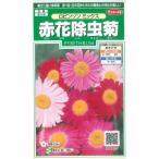 花の種 オール1割引き!赤花除虫菊 ロビンソンミックス 小袋  サカタのタネ