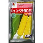 とうもろこし種 キャンベラ90EX 2000粒 タキイ種苗