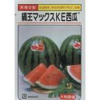 野菜種 西瓜 縞王マックスKE西瓜 10粒 天理交配