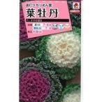 花の種 葉牡丹 すずめ混合 タキイ種苗(NL300)
