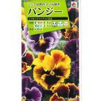 花の種 オール1割引き! パンジー シャロンジャイアント混合 0.3ml タキイ種苗