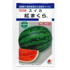 野菜種 スイカ 紅まくら 9粒 タキイ交配