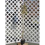 【1年間枯れ保証】【春に花が咲く木】常緑ヤマボウシ株立ち 1.5m18cmポット 【あすつく対応】