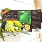 レモン 苗木 クックユーレカレモン 15cmポット苗 れもん 苗 檸檬