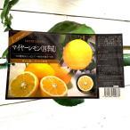 レモンの木 レモン 苗 マイヤー 四季成 15cmポット苗