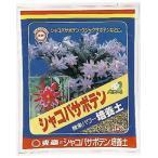 【東商 5L】シャコバサボテン培養土10L 5袋セット
